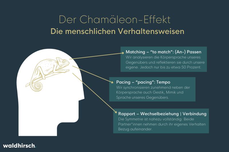 Grafik zu den menschlichen Verhaltensweisen beim Chamaeleon-Effekt
