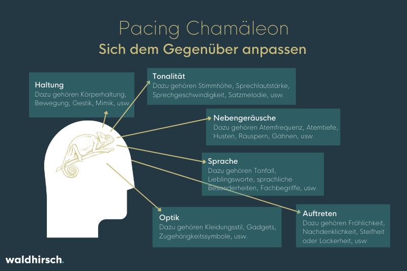 Grafik zur Erklärung des Pacing anhand des Chamaeleon-Effekts