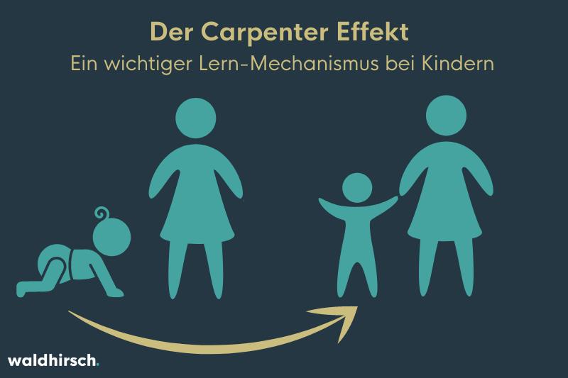 Grafik mit einem Kleinkind, das laufen lernt, und seiner Mutter zur Darstellung des Carpenter Effekts als Lern-Mechanismus